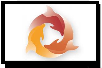 Thumbnail_eDelphyn_Software